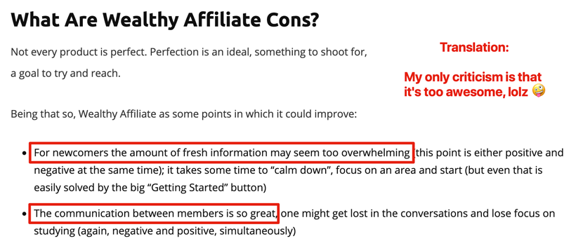 Wealthy Affiliate fake cons